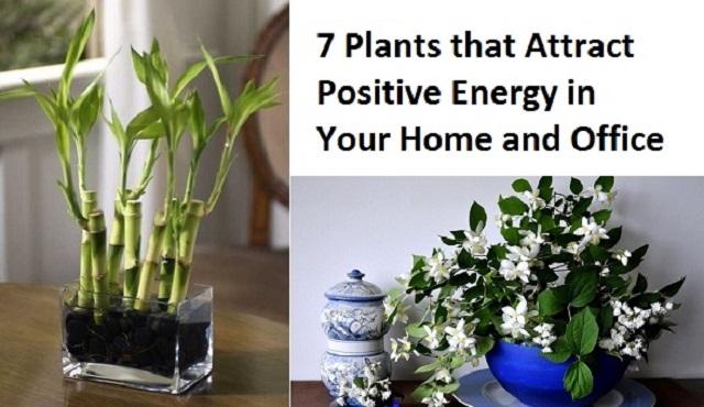 7-positive-energy