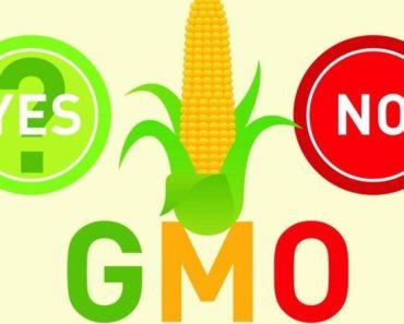 2015-12-22-1450816296-3215262-GMO_labeling