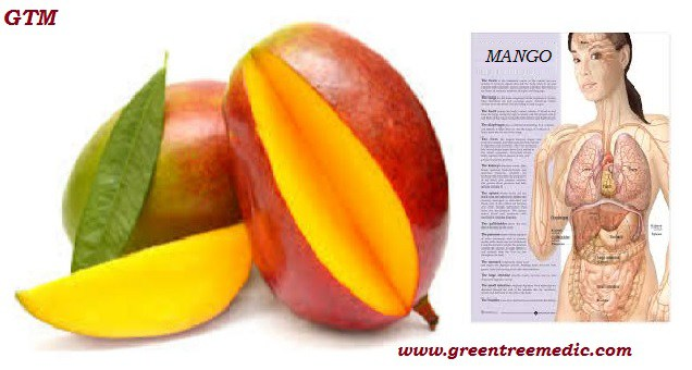 Fruits, Health, Healthy Eating5 REASONS WHY MANGO IS THE BEST CHOICE