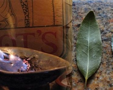 burn-a-bay-leaf-in-your-house-the-reason-youll-be-amazed