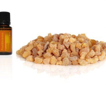 Frankincense essential oil to destroy cancer cells