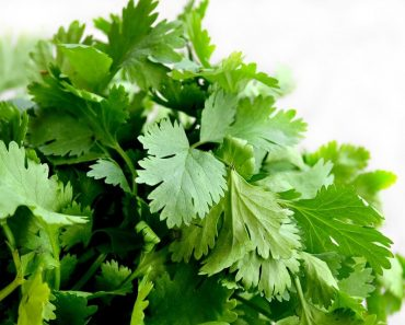Wash your face with parsley to fight acne wrinkles and spot