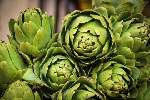 Artichokes to fight fever