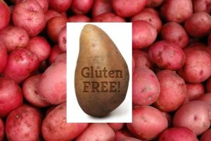 do potatoes contain gluten